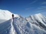 Alpi 2008.